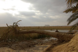 Fatnas Island