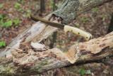 Golok Chopping.jpg