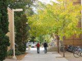 Autumn on the ISU Campus smallfile IMG_1419.jpg
