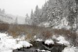 Porcupine Creek _DSC0085.jpg