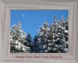 NEW YEAR CARD 2007 smallfile P1000422.jpg