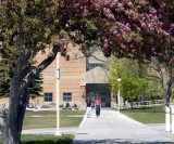 ISU Campus Spring Scene with Physical Science Bldg smallfile _DSC0262.JPG