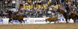 Rodeo 2007 _DSC0489.jpg