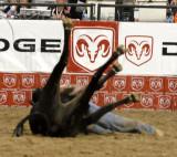 Rodeo 2007 _DSC0163.jpg