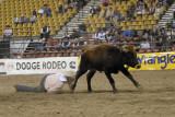 rodeo 2007 _DSC0253.jpg