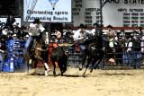 rodeo 2007 _DSC0273.jpg