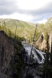 Gibbons Falls Yellowstone _DSC0347.jpg