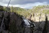Gibbons Falls Yellowstone _DSC0363.jpg