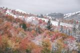 Pocatello Autumn Scene with Snow _DSC0118.jpg