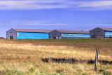 Blue Barns