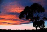 St Helena Sunset