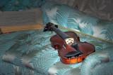 Violin  & music book ~