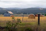 Barn and hay bales