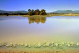 Domaine Chandon Lake