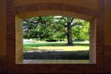 Garden view through the arch