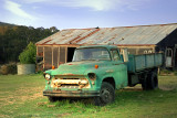 old green truck ~