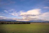Yarra Valley plains