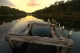 Lake Tyers ~*