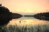 Lake Tyers as dusk falls ~