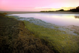 Lake Bunga summer sunset ~