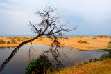 Lakes Entrance sand dunes