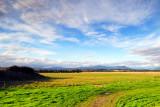 yarra valley in summertime