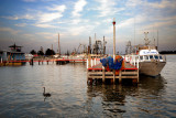 Fishing boat Wharf ~