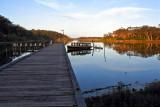 Lake Tyers still waters