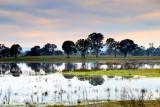 After the Gippsland floods ~