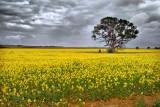 Western Victoria