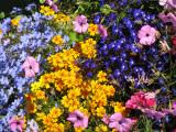 Buchart_Gardens_Victoria_3.jpg