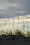 Ocean breeze 2