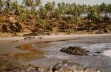 Goa Middle Vagator Beach