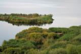 Lake Srebarna  5413
