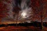 Moonlight long exposure