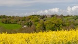 _MG_0423-Edit.jpg View of Trematon Castle over rape field from St Stephen - Saltash- © A Santillo 2006