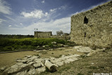 IMG_5151 - Yarkon and Tel Afek National Park