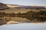 IMG_4984 - Ornithological Park in Eilat