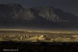IMG_3327 - Judah Desert
