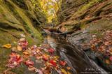 Majestic Autumn gorge
