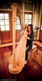 Young harpist