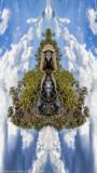 Flora reimagined