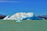 Glaciers Cruise