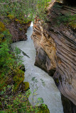 32_Athabasca Falls.jpg