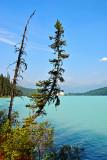 60_Lake Louise.jpg