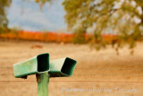 2 green mailboxes in Fall vineyard