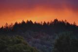sunset towards Annadel state park