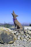 Fort Irwin Coyote Statue