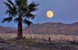 Shoshone Full Moon over Hills