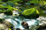 Santa Rosa Creek Headwaters
